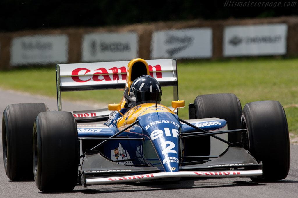 Williams FW15C Renault - Chassis: FW15C-5 - Driver: Damon Hill  - 2011 Goodwood Festival of Speed