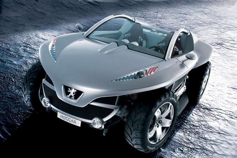 Click here to open the Peugeot Hoggar gallery