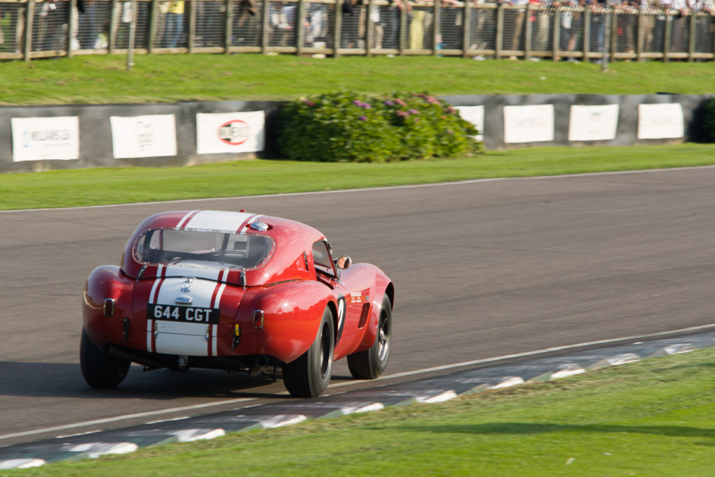 AC Shelby Cobra Le Mans - Chassis: CSX2130   - 2008 Goodwood Revival
