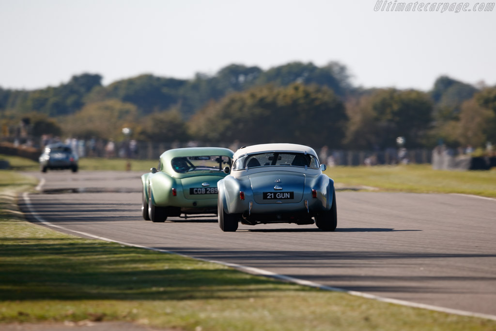 AC Shelby Cobra Mk II 289 - Chassis: COB6044  - 2019 Goodwood Revival