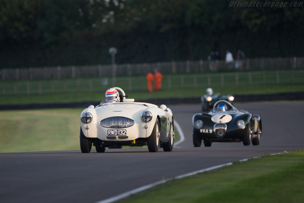 Austin Healey 100S - Chassis: AHS 3702   - 2014 Goodwood Revival