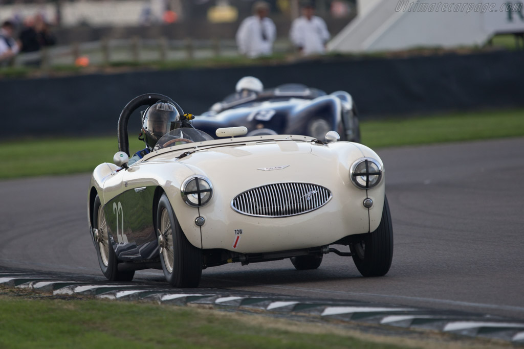 Austin Healey 100S - Chassis: AHS 3603   - 2014 Goodwood Revival