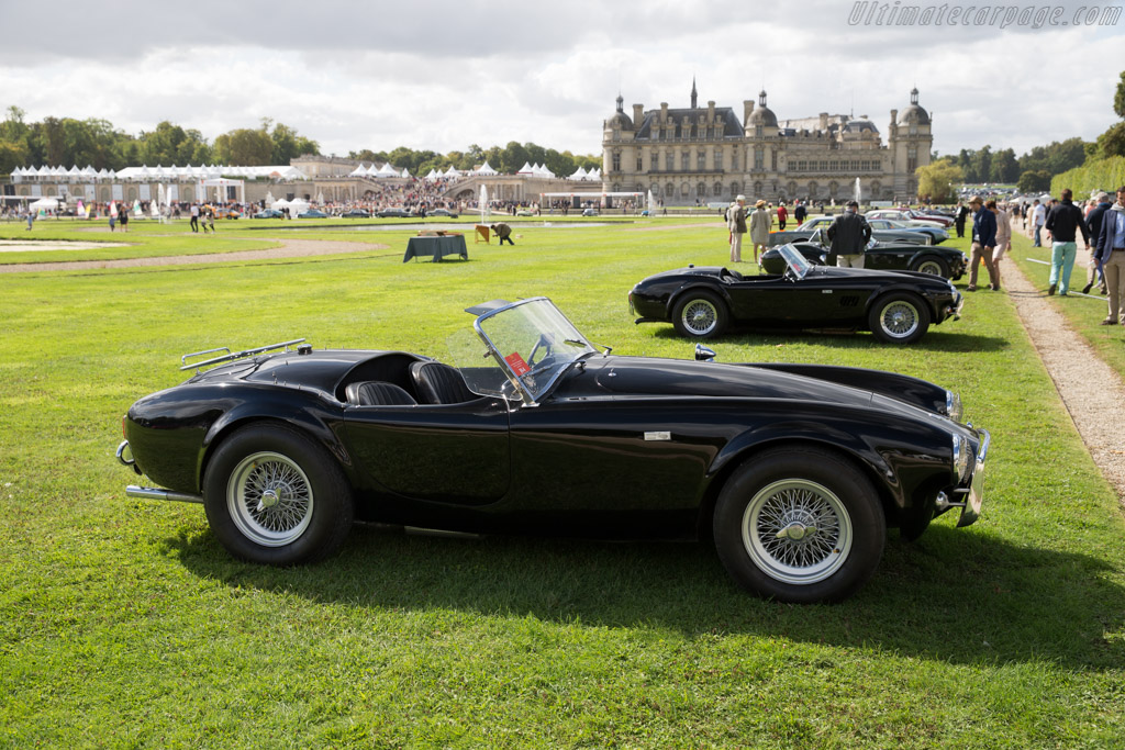 AC Shelby Cobra 289 - Chassis: CSX2055 - Entrant: Martin Walford  - 2015 Chantilly Arts & Elegance