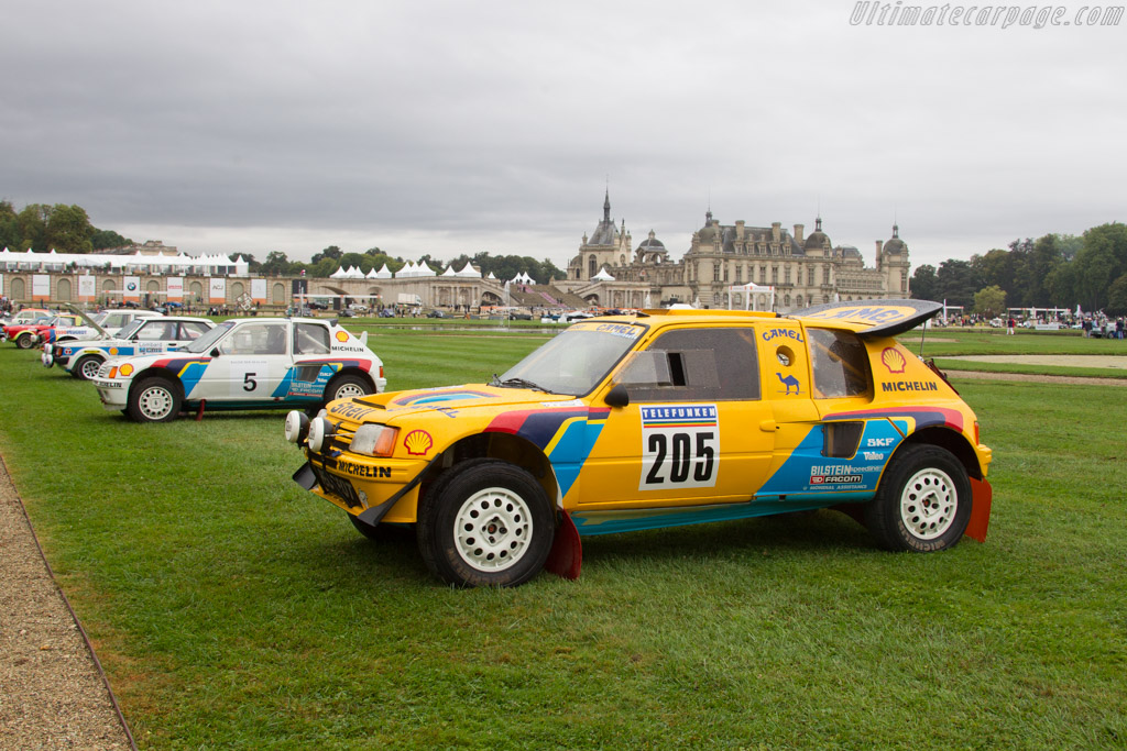 Peugeot 205 Turbo 16 Grand Raid    - 2016 Chantilly Arts & Elegance