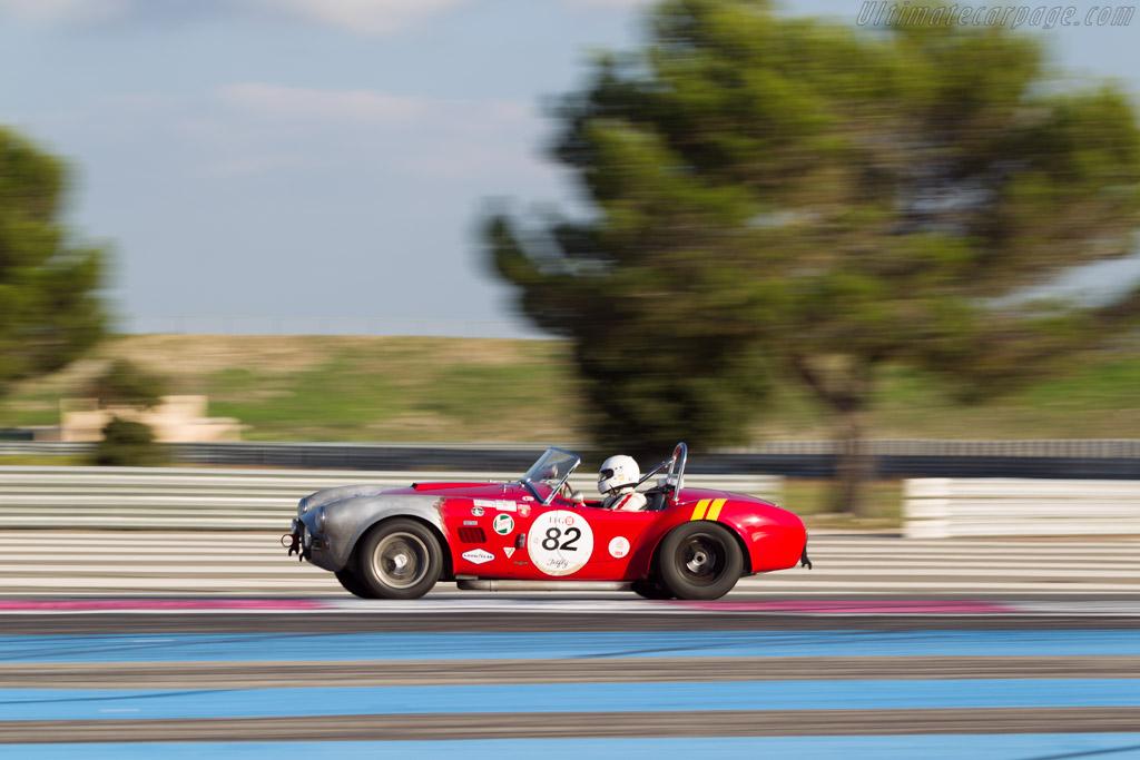 AC Shelby Cobra - Chassis: CSX2009 - Driver: Xavier Galant / Vincent Neurrisse  - 2014 Dix Mille Tours