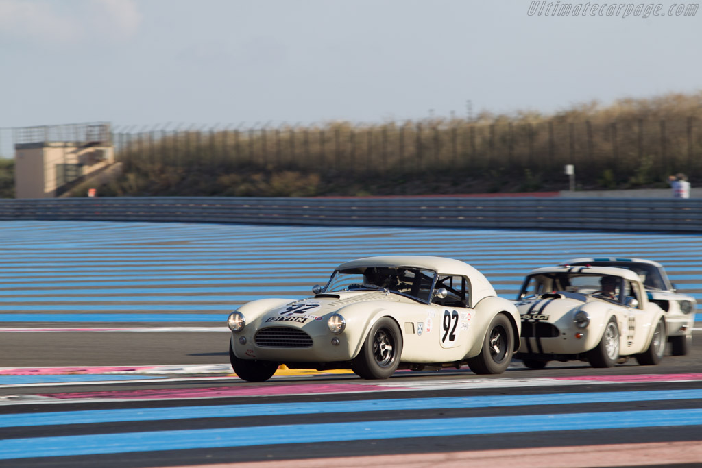 AC Shelby Cobra - Chassis: COB6008 - Driver: Tim Summers  - 2014 Dix Mille Tours