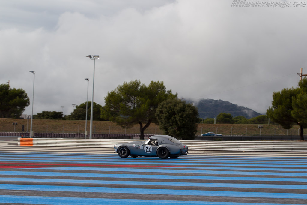 AC Shelby Cobra 289 - Chassis: CSX2111 - Driver: Pierre-Alain France / Erwin France - 2015 Dix Mille Tours
