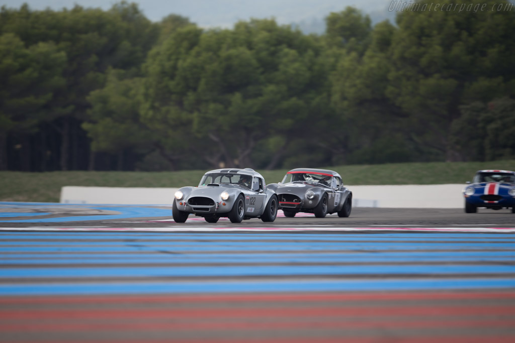 AC Shelby Cobra - Chassis: CSX2029 - Driver: Nicolas Chambon  - 2016 Dix Mille Tours