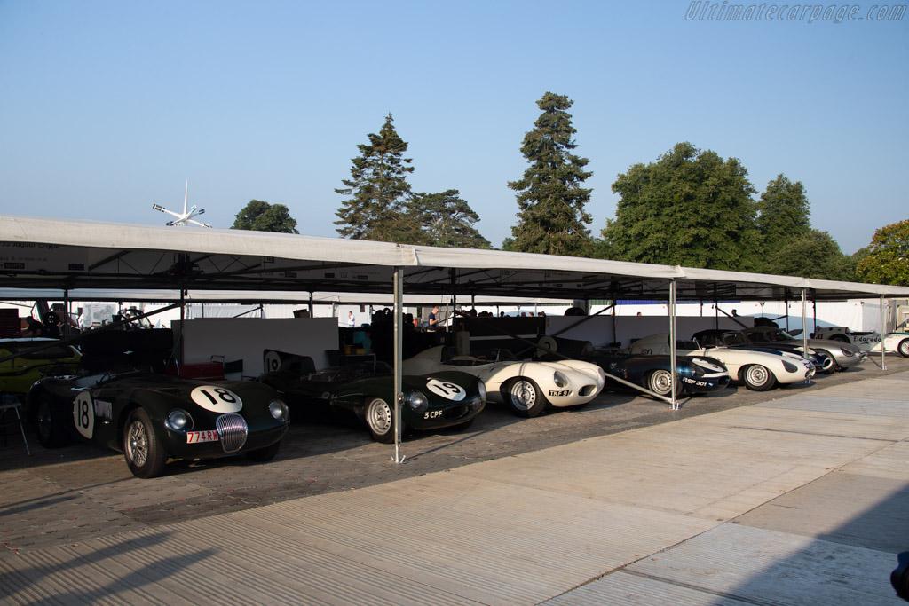Jaguars    - 2018 Goodwood Festival of Speed