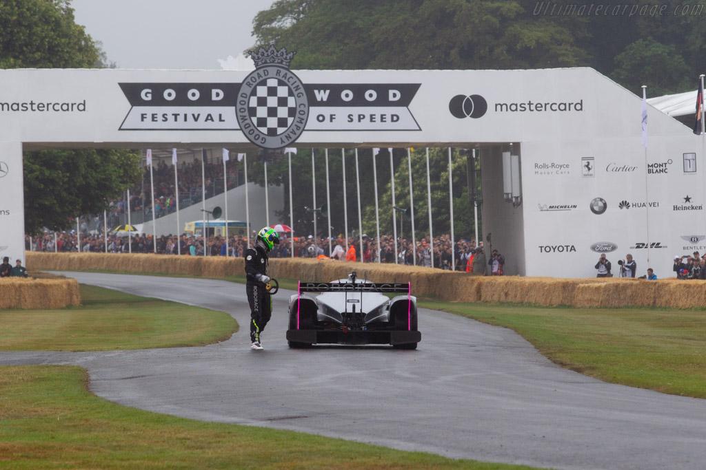 Roborace Devbot 2.0  - Entrant: Roborace - 2019 Goodwood Festival of Speed