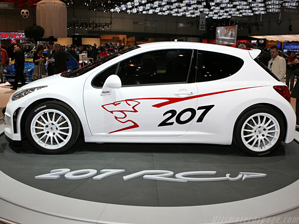 Peugeot 207 RCup Concept    - 2006 Geneva International Motor Show