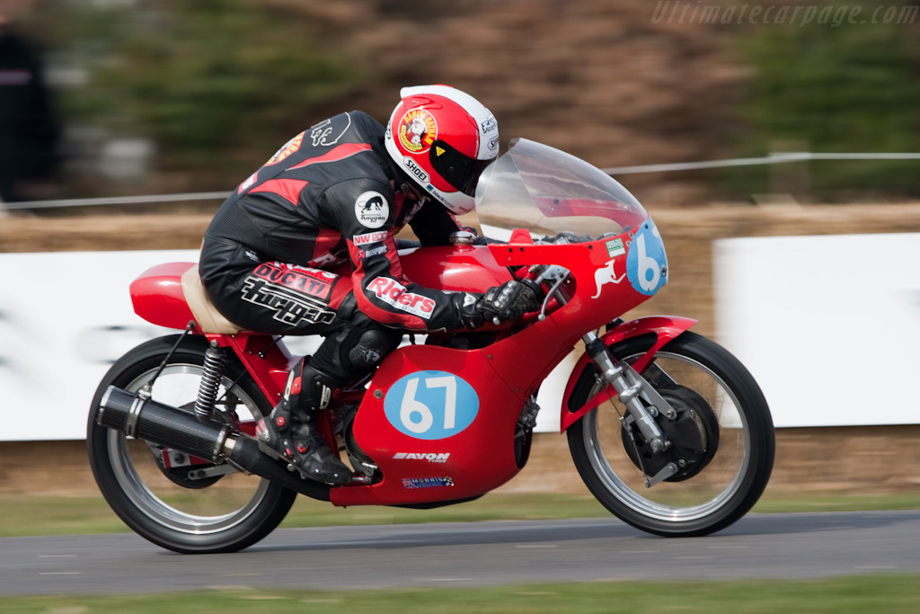 Aermacchi Ala Dora    - 2010 Goodwood Preview