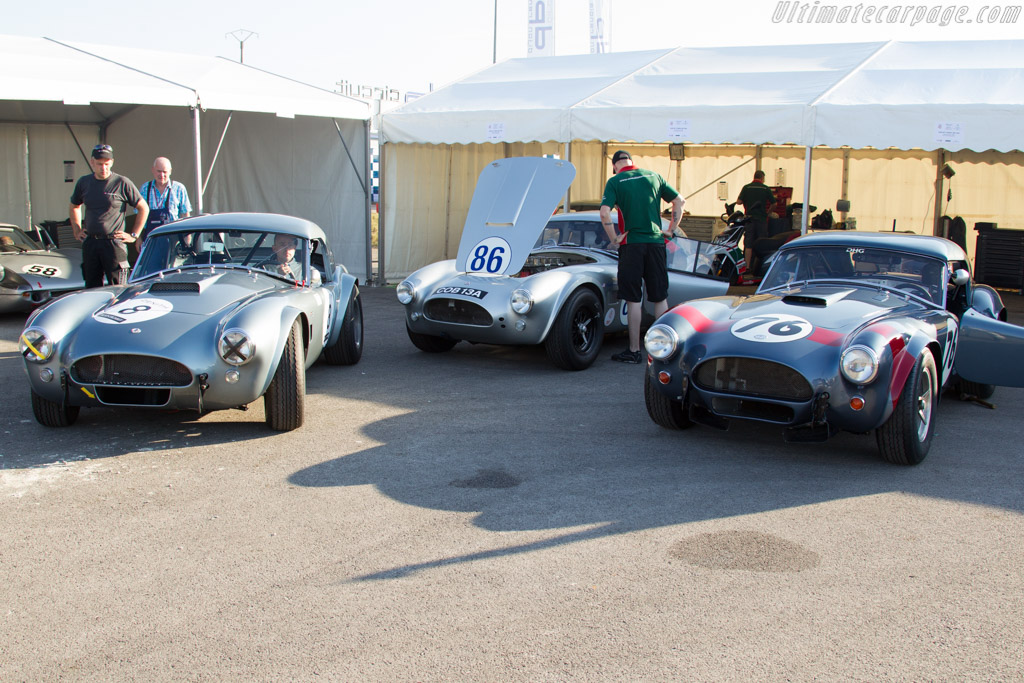 Cobras galore    - 2015 Grand Prix de l'Age d'Or