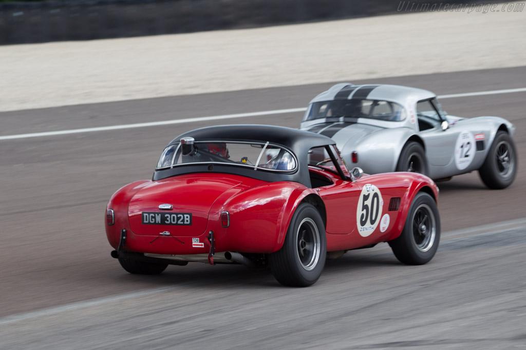 AC Shelby Cobra - Chassis: CSX2349 - Driver: Ben Gill  - 2017 Grand Prix de l'Age d'Or