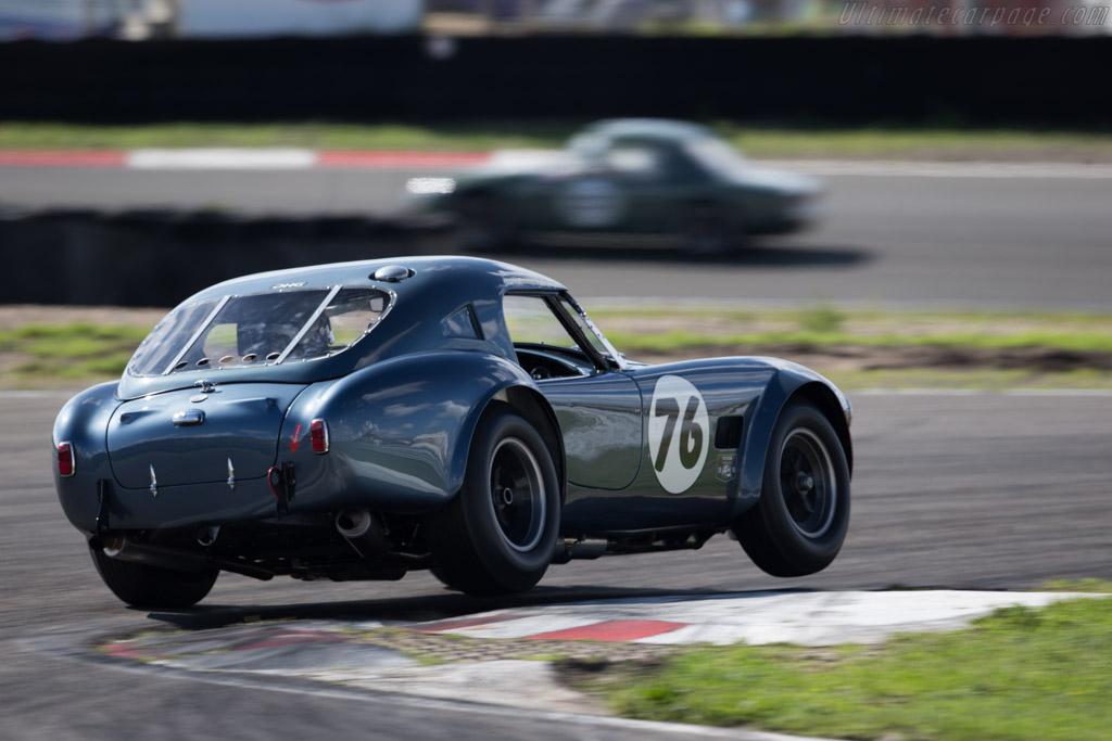 AC Shelby Cobra - Chassis: CSX2049 - Driver: David Hart / Giedo van der Garde  - 2015 Historic Grand Prix Zandvoort