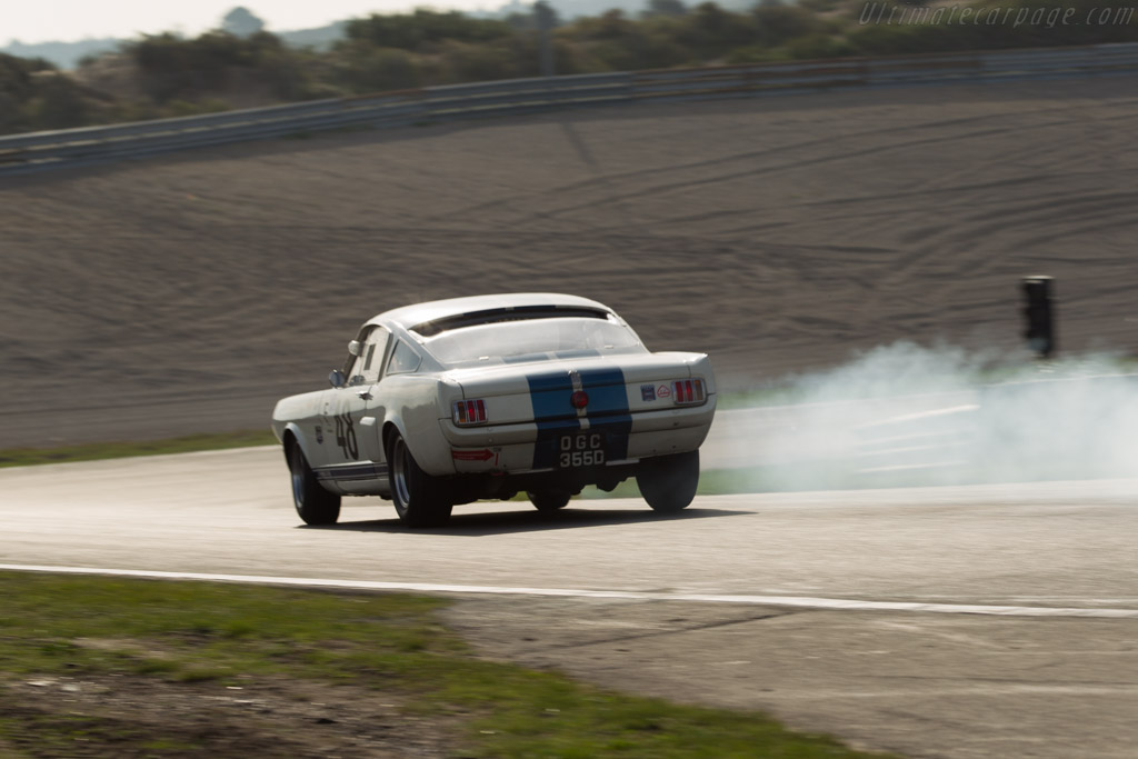 Ford Shelby Mustang Gt350 Driver Frans Van