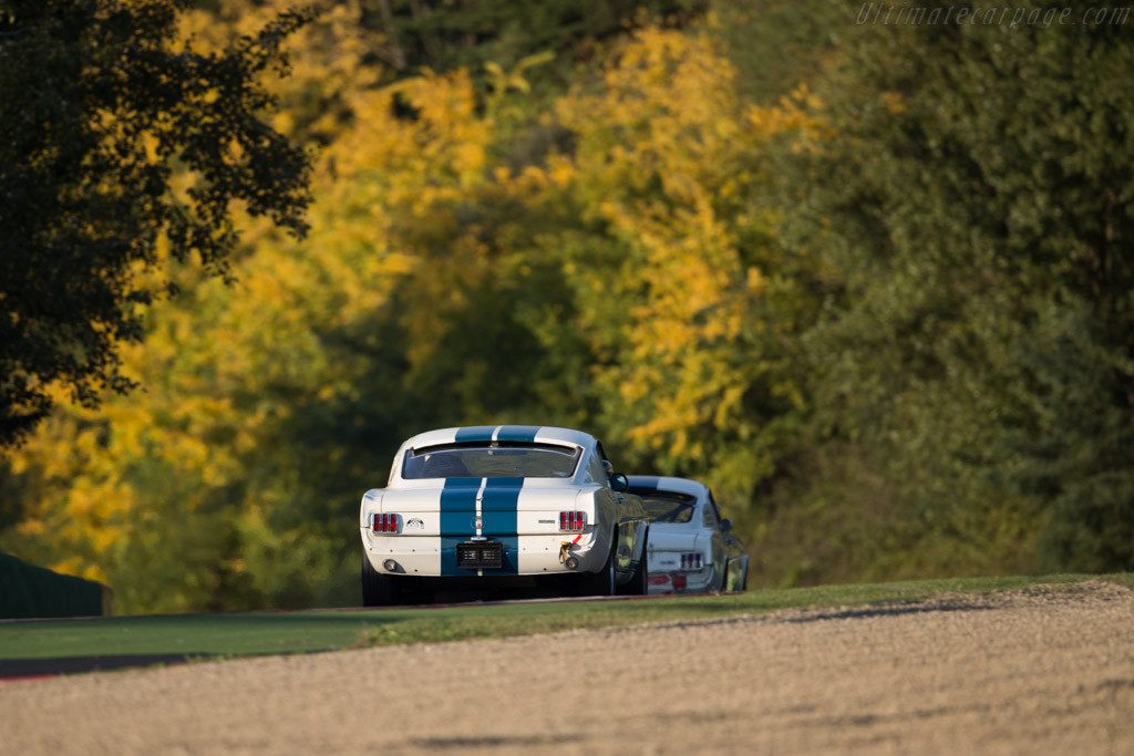 Ford Shelby Mustang GT350 - Chassis: SFM6S508 - Driver: Thomas Studer - 2016 Imola Classic