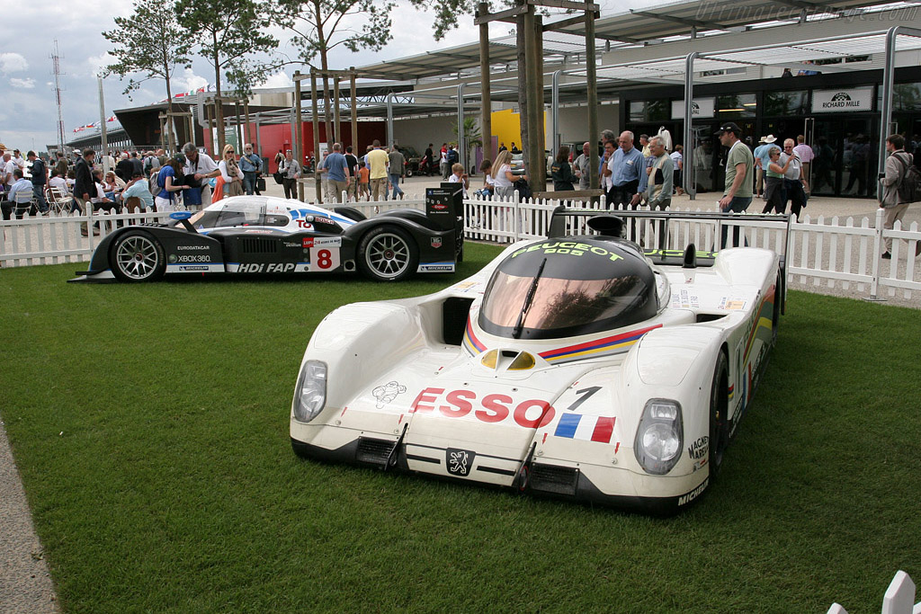 The Lion Le Mans racers    - 2008 Le Mans Classic