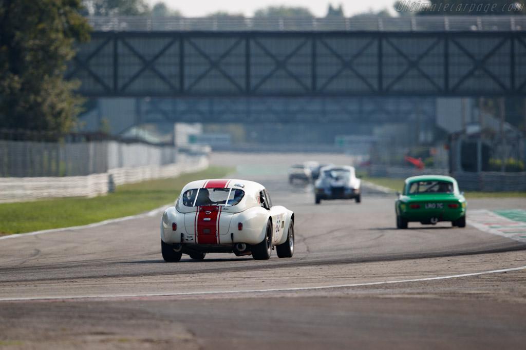 AC Shelby Cobra 289  - Driver: Peter Fischer / Benjamin Monnay - 2020 Monza Historic