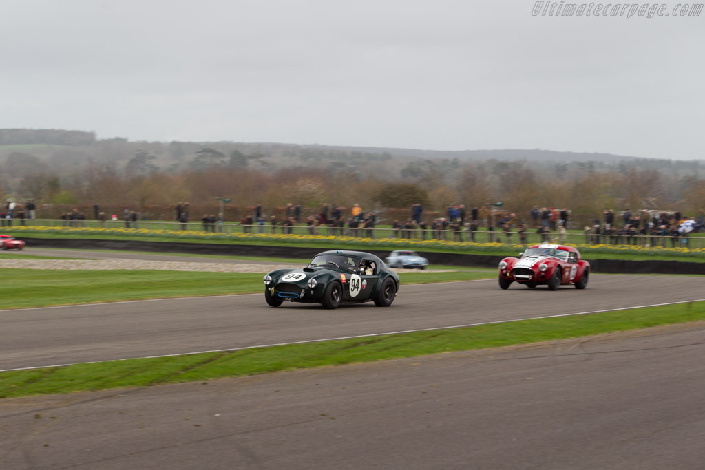 AC Shelby Cobra - Chassis: CSX2016 - Entrant: Jason Wirght - Driver: Michael Gans / Andy Woolfe  - 2017 Goodwood Members' Meeting