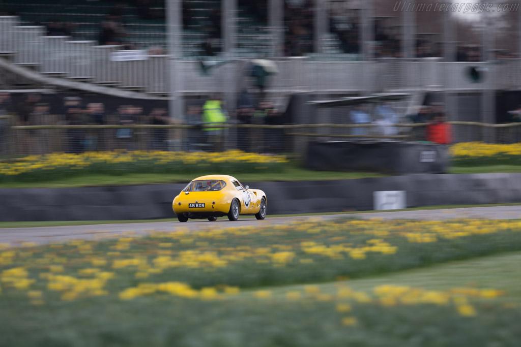 Austin Healey Sebring Sprite  - Driver: Charles Clegg  - 2017 Goodwood Members' Meeting
