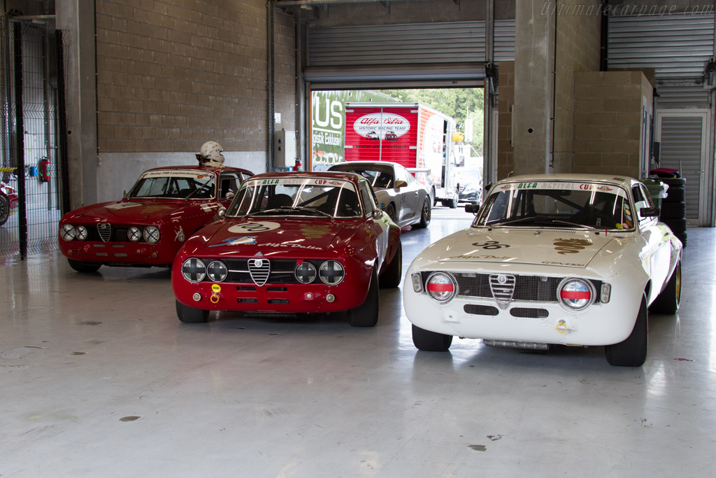 Alfa Romeo 1750 GTAm - Chassis: 4358482   - 2015 Modena Trackdays