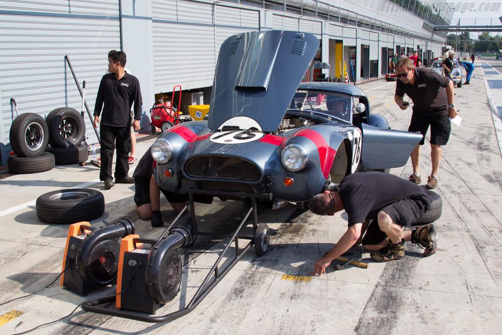AC Shelby Cobra - Chassis: CSX2049 - Driver: David Hart / Giedo van der Garde  - 2015 Monza Historic