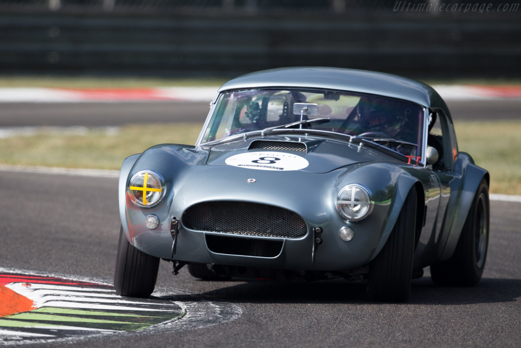 AC Shelby Cobra - Chassis: CSX2229 - Driver: Philipp Oettli  - 2015 Monza Historic