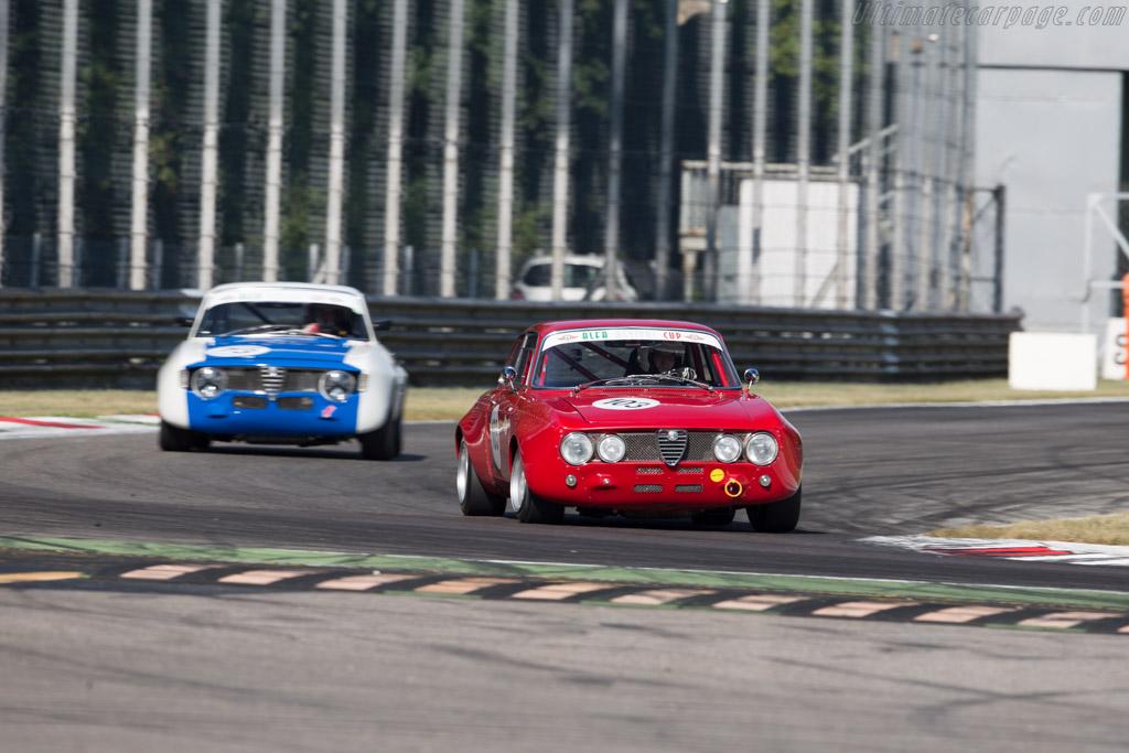 Alfa Romeo 1750 GTAm  - Driver: Bernd Winkler / Christophe Winkler  - 2015 Monza Historic