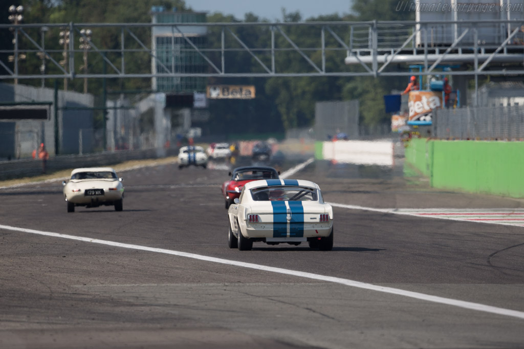 Ford Shelby Mustang GT350R - Chassis: SFM5R107 - Driver: Richard Meier / Remo Lips  - 2015 Monza Historic