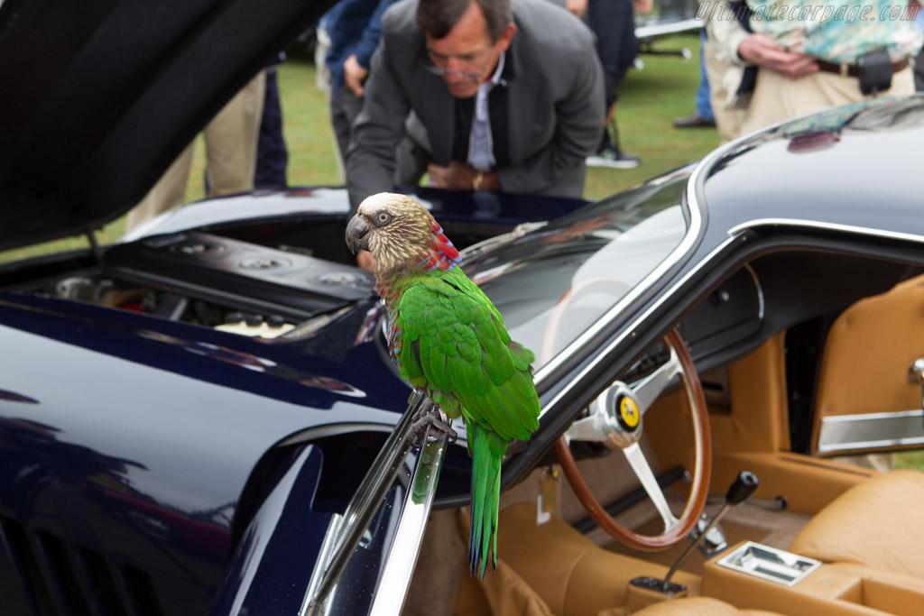 Parrot    - 2013 Pebble Beach Concours d'Elegance