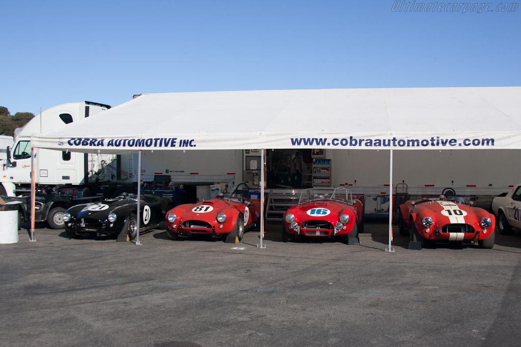Cobras    - 2012 Monterey Motorsports Reunion