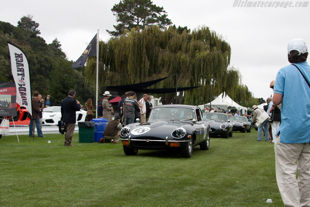 Jaguar E-Type    - 2011 The Quail, a Motorsports Gathering