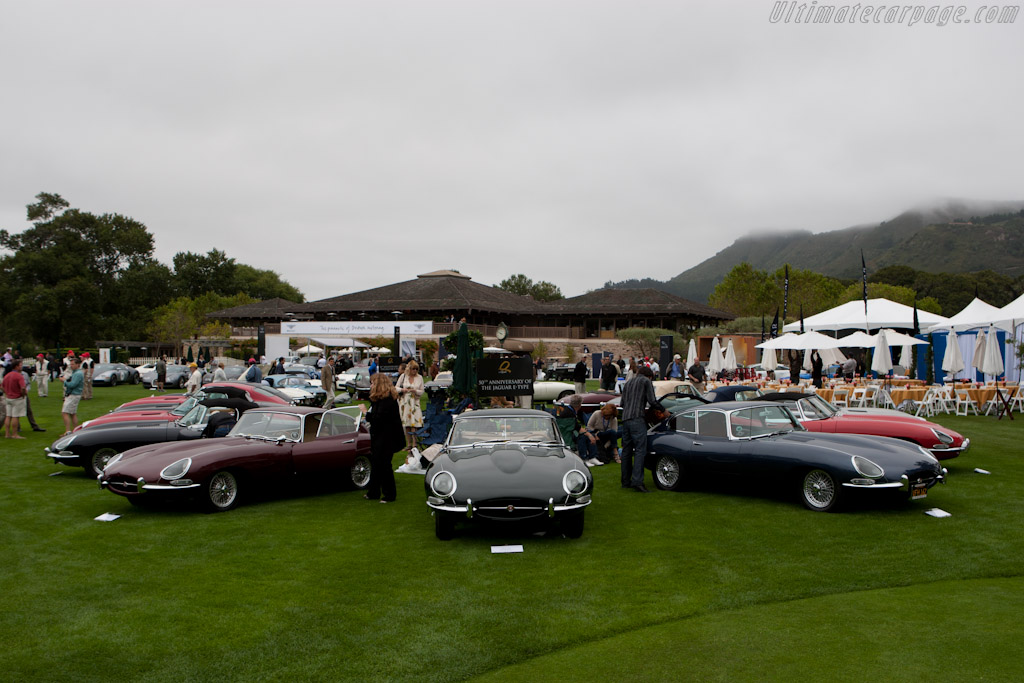 Jaguar E-Types   - 2011 The Quail, a Motorsports Gathering