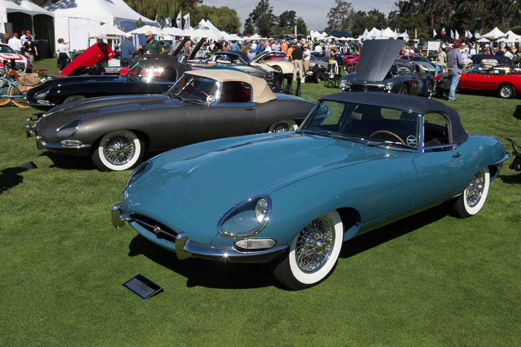 Jaguar E-Type Roadster    - 2014 The Quail, a Motorsports Gathering