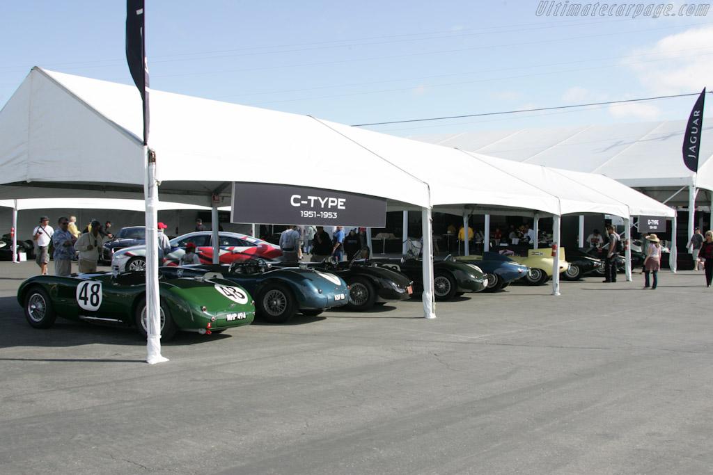Jaguar C-Types    - 2011 Monterey Motorsports Reunion