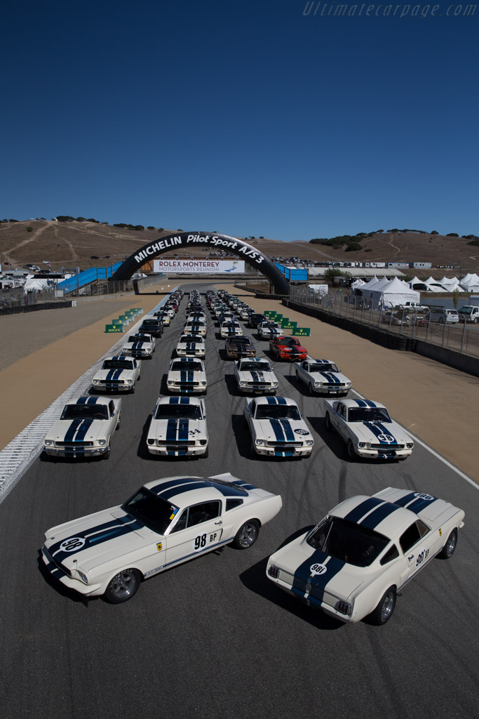 Ford Shelby Mustang GT350    - 2015 Monterey Motorsports Reunion