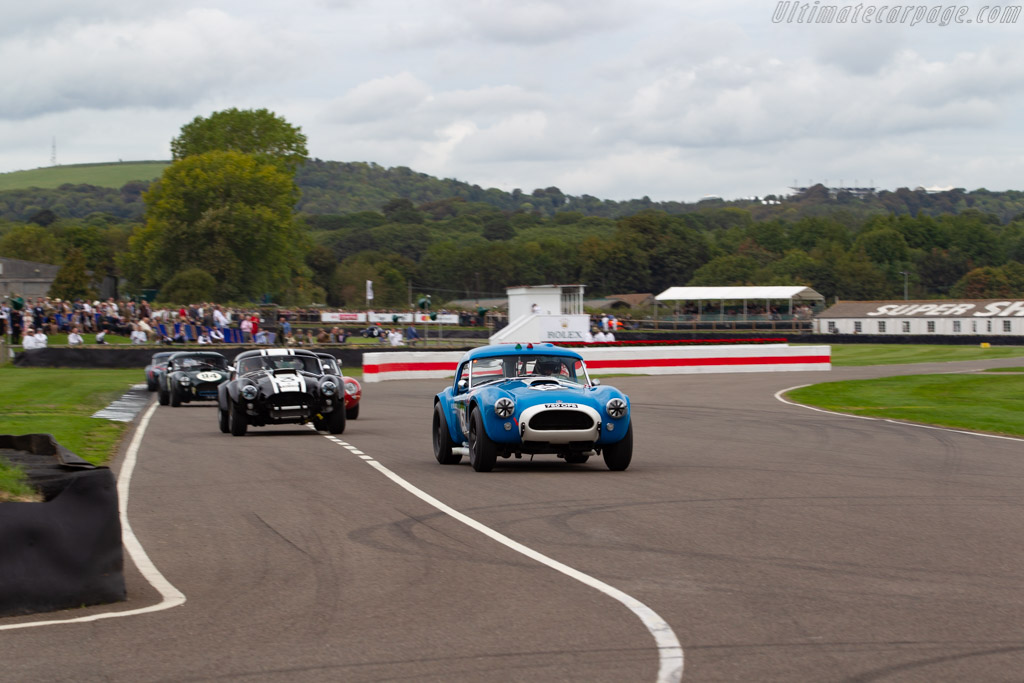 AC Shelby Cobra - Chassis: COB6006   - 2018 Goodwood Revival