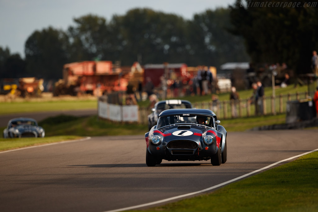 AC Shelby Cobra - Chassis: CSX2049 - Entrant: David Hart - Driver: David Hart / Olivier Hart  - 2018 Goodwood Revival
