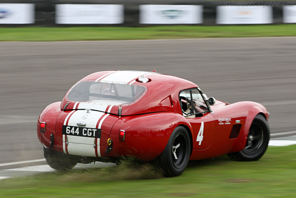 Shelby Cobra - Chassis: CSX2130   - 2007 Goodwood Revival