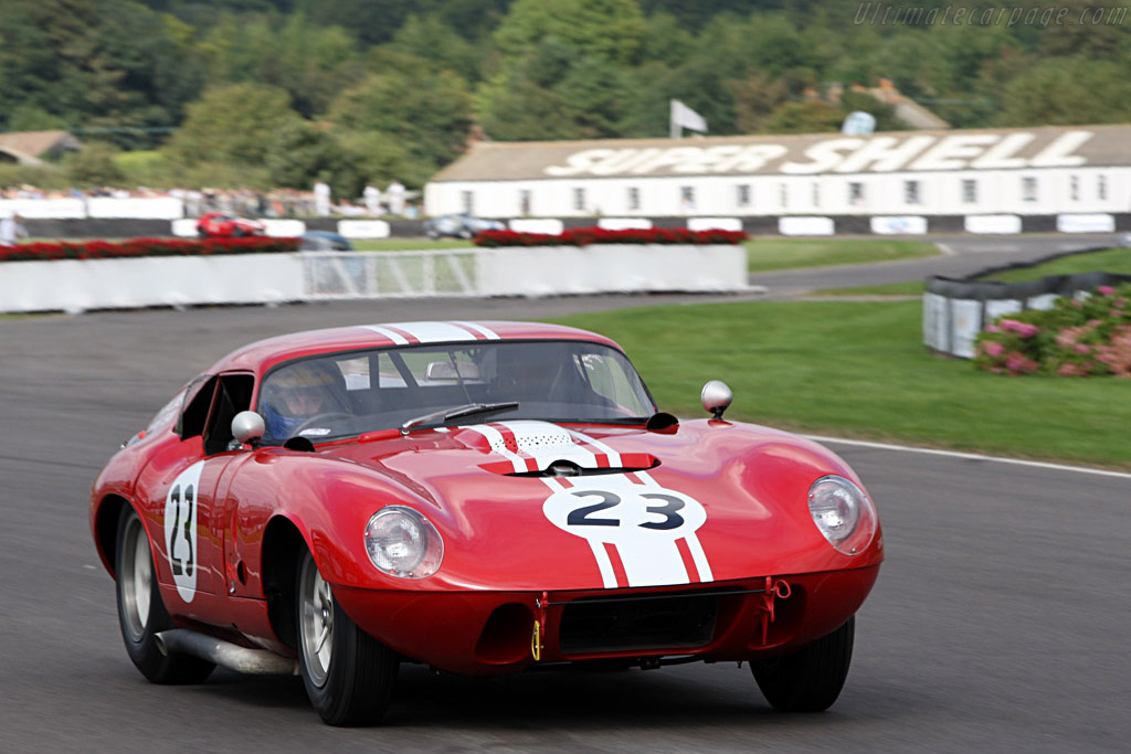 Shelby Cobra Willment Coupe - Chassis: CSX2131   - 2007 Goodwood Revival