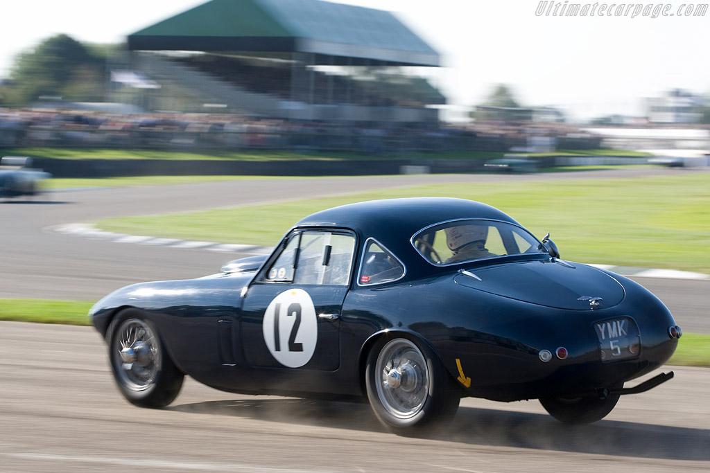Frazer Nash Le Mans - Chassis: 421/200/186   - 2008 Goodwood Revival
