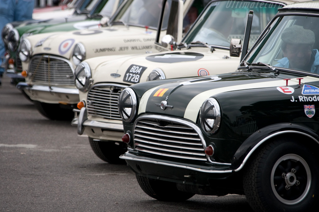 Minis galore    - 2009 Goodwood Revival