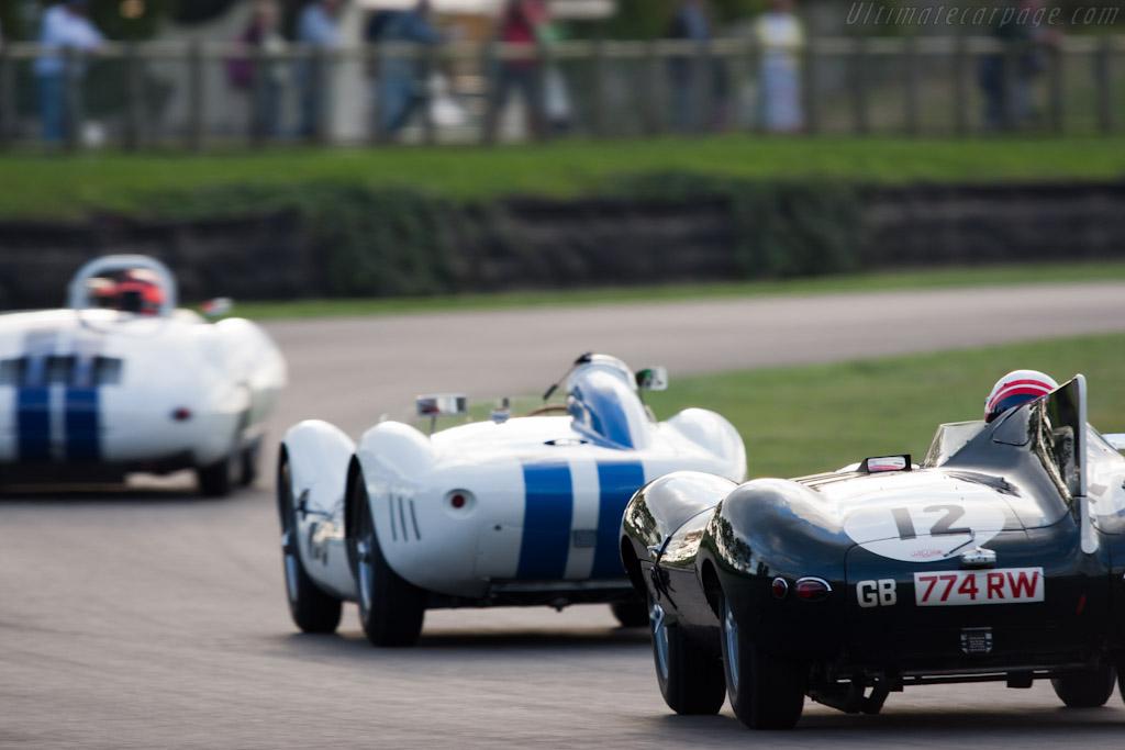 Jaguar D-Type - Chassis: XKD 505   - 2011 Goodwood Revival