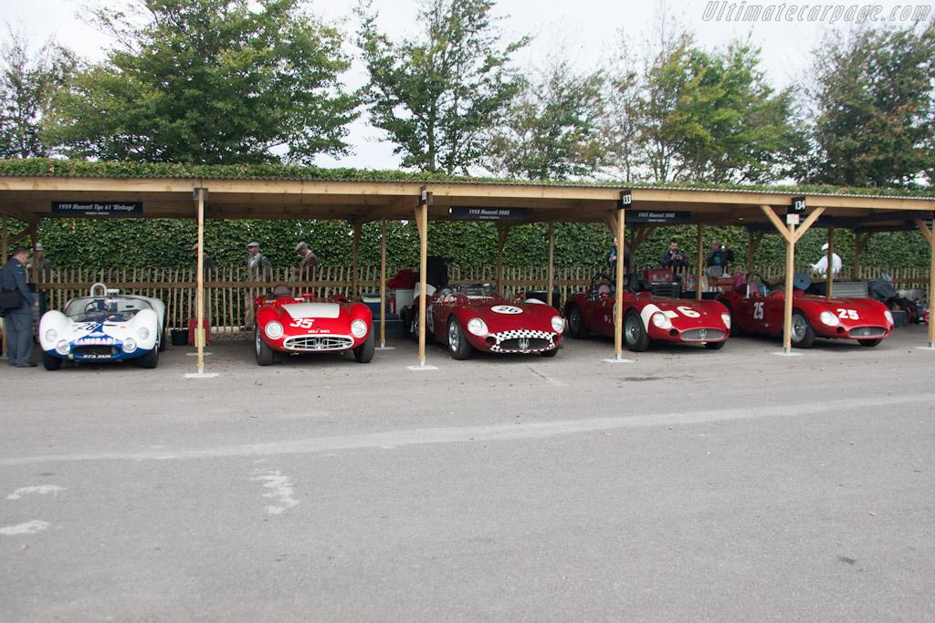 Maseratis    - 2012 Goodwood Revival