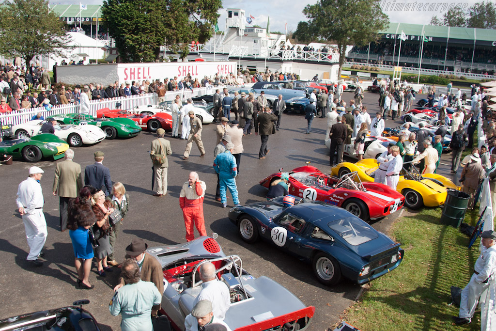 Whitsun Trophy Field    - 2012 Goodwood Revival