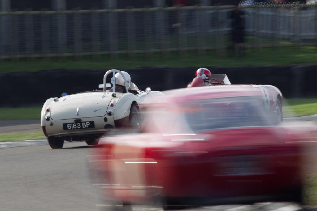 Austin Healey 100/6 - Chassis: BN6/2497 - Entrant: Caroline Andreanoff - Driver: Rick Haythornthwaite  - 2013 Goodwood Revival