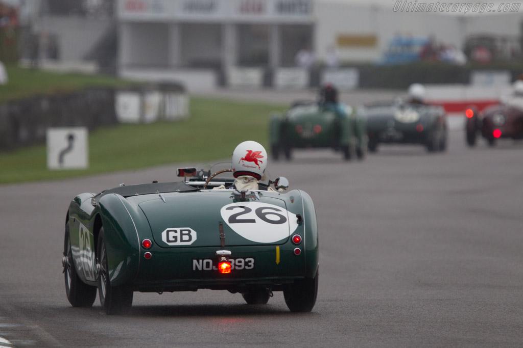 Austin Healey 100S - Chassis: SPL-226B - Entrant: Daniel Schlatter - Driver: Daniel Schlatter / Mauro Pane  - 2013 Goodwood Revival