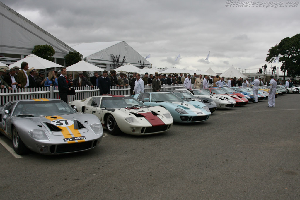 Ford GT40s - Chassis: GT40P/1041   - 2013 Goodwood Revival