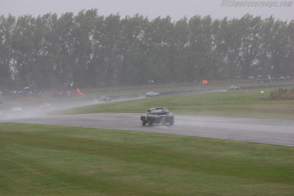 Jaguar E-Type - Chassis: 850011 - Entrant: Gary Pearson - Driver: Karun Chandhok  - 2013 Goodwood Revival
